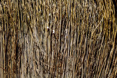 The texture of straw. Texture of woven fence or a fence for the urban home and garden Royalty Free Stock Image