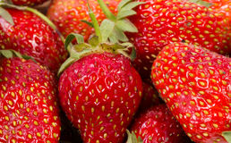 The texture of strawberries Stock Photos