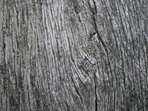 Texture / Structure: weathered wood Stock Images
