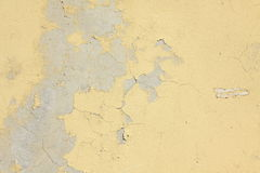 Texture stucco wall Stock Photography