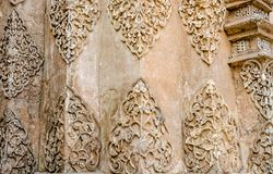 Texture of Stucco white color tree Stock Photography