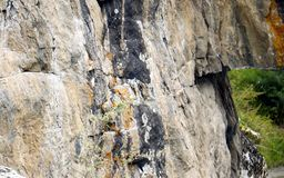 Texture sur la roche images stock