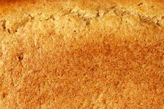 Texture of a surface of a crust of rye fresh bread orange colors. Template royalty free stock photography