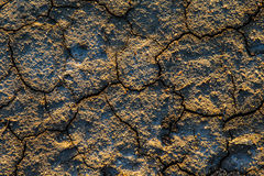 The texture of the surface of the earth that has cracked from dr Stock Photo