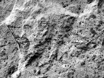 Texture of a surface of granular architectural putty Royalty Free Stock Photo