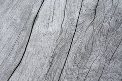 texture surface of old wood. Stock Photo