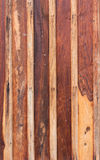Texture surface wood Royalty Free Stock Photo