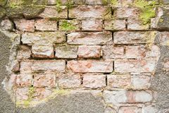 Texture of surfrace of old brick wall background Royalty Free Stock Photos