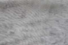 Texture synthetic mesh fabric of gray color Stock Images