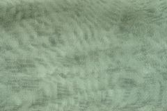 Texture synthetic mesh fabric of green color Royalty Free Stock Photos