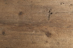 Texture of termite damaged wood Royalty Free Stock Photography