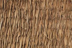 Texture of thatch roof. Texture and detail of thatch roof royalty free stock images