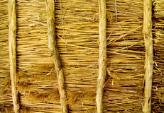 Texture of a thatched roof Royalty Free Stock Photography