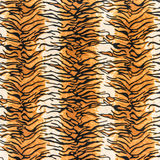 Texture of tiger leather royalty free stock image