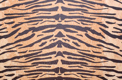 Texture of tiger skin Royalty Free Stock Image