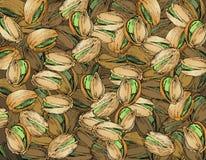 Texture tirée par la main de pistaches illustration stock