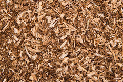 Texture of tobacco. For cigarettes. Background Royalty Free Stock Image