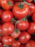 Texture of tomatoes Royalty Free Stock Image