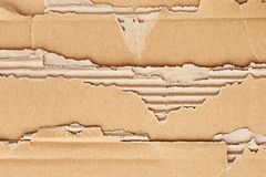 Texture of torn cardboard Royalty Free Stock Image