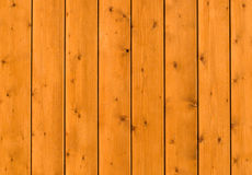 texture trä Arkivbilder