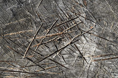 Texture of tree stump. Texture of bark wood use as natural background, texture of tree stump, marks of an ax, serifs on the board, close up , top view Royalty Free Stock Image