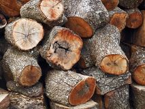 Texture of tree trunks. Wood, background, firewood, stacked Stock Photo