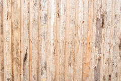 The texture of the tree, the wall, the floor are made of natural wood, the boards have poor-quality processing, many fibers. And knots, vertical orientation royalty free stock photography