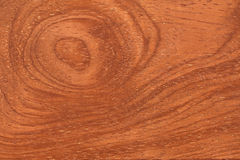 Texture of tropical wood Royalty Free Stock Images
