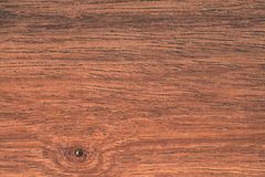 Texture of tropical wood Stock Images