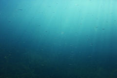 Texture underwater depth Royalty Free Stock Photography