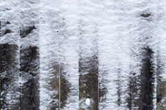 Texture of unpainted old wooden fence covered with snow Stock Images