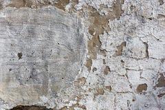 texture väggen Royaltyfri Foto