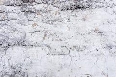 texture väggen Royaltyfri Bild