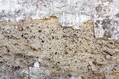 texture väggen Arkivfoto