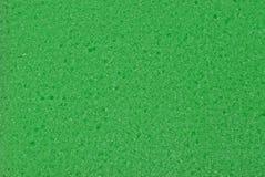 Texture vert clair d'éponge sèche de mousse Photo stock