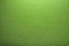 Texture vert clair de toile Images stock