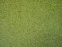 Texture vert clair granulaire photos libres de droits