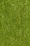 Texture verte d'écorce Image stock