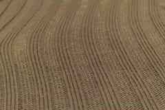 Texture verte de laine Photographie stock
