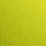 Texture verte de lame Images libres de droits