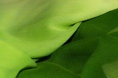 Texture verte de tissu de mousseline de soie, texture diagonale Photo libre de droits