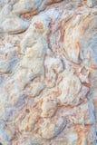 Texture verticale en pierre sauvage Image stock