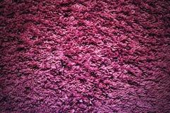 Texture violette Photographie stock libre de droits
