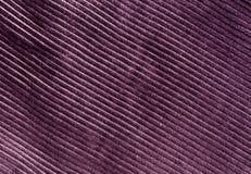 Texture violette de tissu de couleur avec le modèle Photo libre de droits