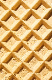 Texture of a wafer Stock Images