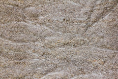 Texture wall coquina Royalty Free Stock Images