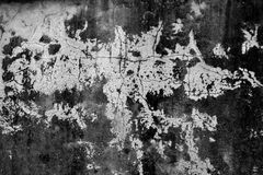 TEXTURE OF WALL DEGRADE Stock Images