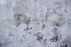 Texture wall gray old plaster with cracks stock photography