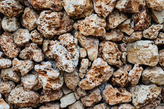 Texture of wall made of the Jerusalem stones. Royalty Free Stock Images