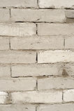 Texture of a wall made of mud bricks. Some parts are wet. Royalty Free Stock Images